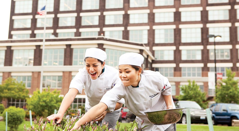 hospitality management culinary